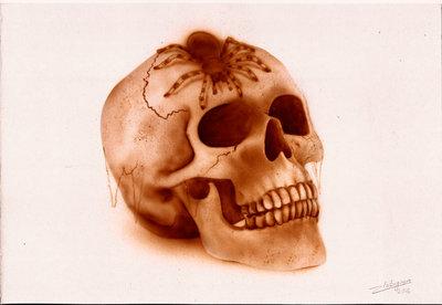 Freehand Skull Project.jpg